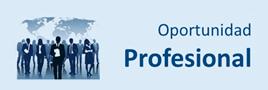 oportunidad-profesional